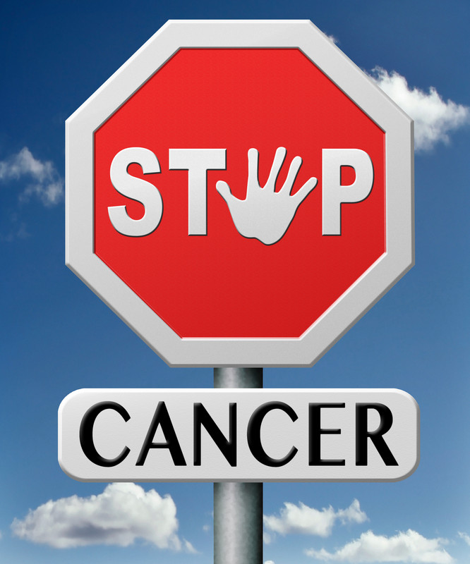 Harnessing the Power of the Immune System to Fight Cancer