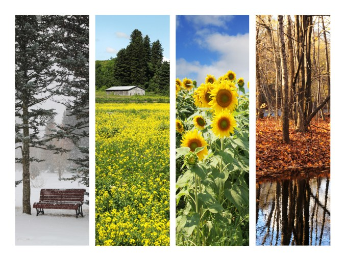 Does Immune Function Change with the Seasons?